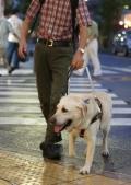 盲導犬刺されけが、鳴き声我慢か 埼玉県警が捜査