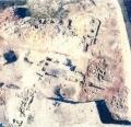 偶然が生んだ発見 600年輝き保つ貝殻から古銭