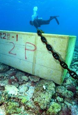 大浦湾の海底75カ所に最大45トンの大型コンクリートブロックが沈められ、サンゴ類が傷つけられた