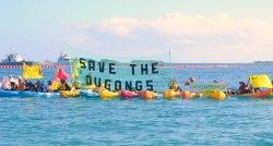 「SAVE THE DUGONGS」の幕を掲げ、基地建設の中止を訴えるグリーンピースのメンバーら=8日、名護市の大浦湾
