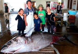 記録的な大きさのクロマグロを前に「幸先いい」と喜ぶ田中船長(左から2人目)=石垣市新栄町、八重山漁協