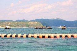辺野古沖に設置されたフロート=2015年10月13日、名護市・大浦湾