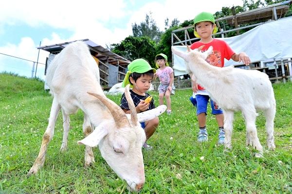 GW・かなり遊べる沖縄の公園7選