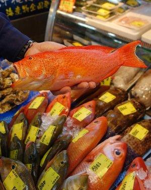 鮮やかな赤が特徴のバラハタ。県内の市場では日常的に扱われている=6日、那覇市港町・泊いゆまち