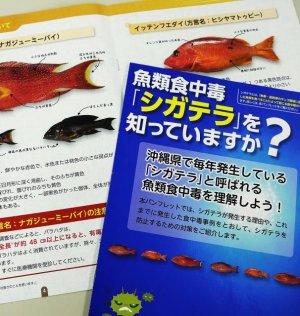 魚類食中毒「シガテラ」への注意を促す県のパンフレット