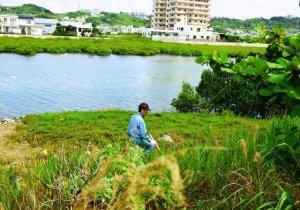 川沿いを調べる捜査員=13日午前10時40分ごろ、うるま市州崎の沖縄IT津梁パーク前