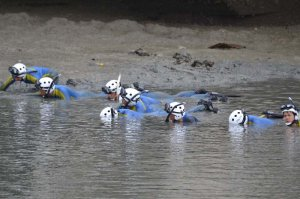 水路でスマホや証拠品などを捜すダイバー=25日午後1時37分、うるま市洲崎