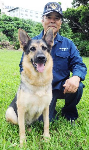 全日本嘱託警察犬競技大会で全国2位になったマックスと、指導手の山内昌靖さん=8日、糸満市のシオン・警察犬訓練所