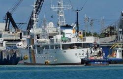 タグボートにえい航され航行する接岸する沖縄水産の実習船「海邦丸五世」=2012年5月