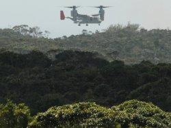 【資料写真】北部訓練場内のヘリパッドに向かい、低空飛行するオスプレイ=2012年10月4日、東村高江