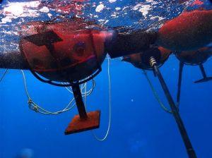 波で海中を揺れ動くむき出しの鉄板。これがおもりとして進入防止用ロープ柵を支えている=日、名護市の大浦湾(ダイビングチーム・レインボー提供)