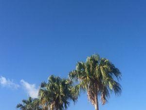 (資料写真)沖縄の青空