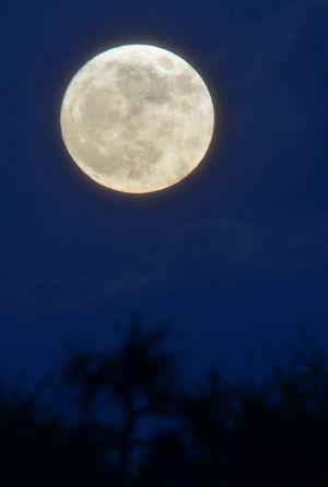 東の空に昇る旧暦10月15日の月=14日午後6時、うるま市・浜比嘉島(下地広也撮影)