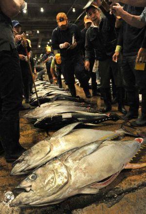 威勢のいい掛け声が響き、活気にあふれた泊魚市場の初競り=4日午前6時すぎ、那覇市
