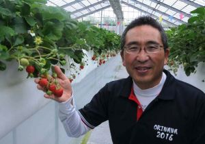 実ったイチゴを手に「おいしい味で幸せになって」と話す遠藤健二さん=20日、糸満市米須・美らイチゴ糸満農園