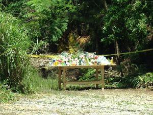 被害者の遺体発見現場には多くの花や飲み物がささげられた(2016年)